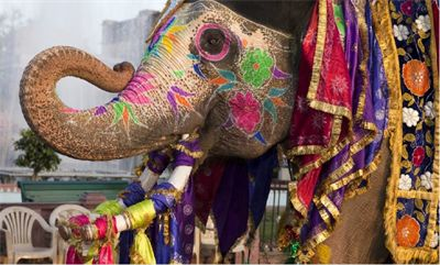holi festivali hindistan ile ilgili görsel sonucu